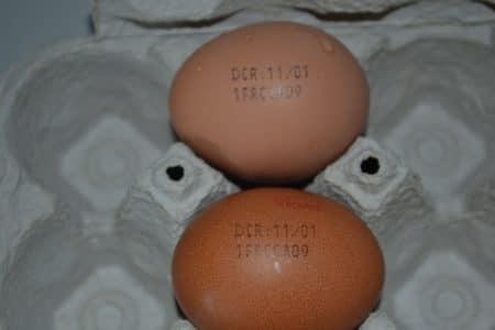 Système de marquage pour les œufs
